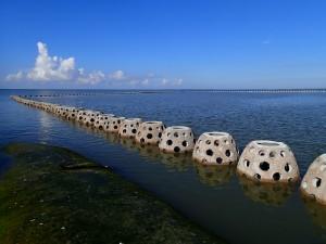 Wesst Bay Moorings Goliath Reef Balls