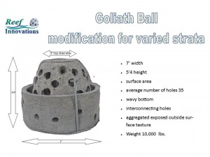 Goliath modivication
